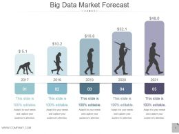 Big Data Market Forecast Powerpoint Presentation