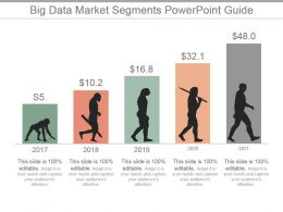 Big Data Market Segments Powerpoint Guide