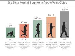 Big Data Market Segments Powerpoint Guide