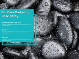 Big Data Marketing Case Study Ppt Powerpoint Presentation Portfolio Graphics Cpb