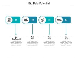 Big Data Potential Ppt Powerpoint Presentation Ideas Icons Cpb