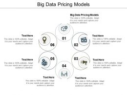 Big Data Pricing Models Ppt Powerpoint Presentation Slides Inspiration Cpb