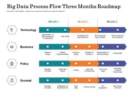 Big Data Process Flow Three Months Roadmap