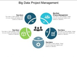 Big Data Project Management Ppt Powerpoint Presentation Gallery Guidelines Cpb