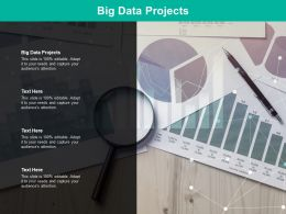 Big Data Projects Ppt Powerpoint Presentation Styles Influencers Cpb