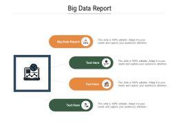 Big Data Report Ppt Powerpoint Presentation Portfolio Structure Cpb
