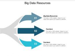 Big Data Resources Ppt Powerpoint Presentation Gallery Portfolio Cpb