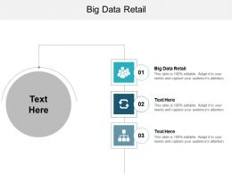 Big Data Retail Ppt Powerpoint Presentation Portfolio Icons Cpb