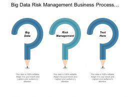 Big Data Risk Management Business Process Outsourcing Benchmarking Cpb