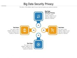 Big Data Security Privacy Ppt Powerpoint Presentation Infographic Template Good Cpb