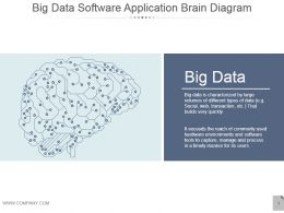 Big Data Software Application Brain Diagram Presentation Diagrams
