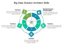 Big Data Solution Architect Skills Ppt Powerpoint Presentation Show Inspiration Cpb
