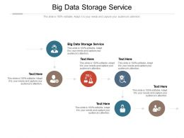 Big Data Storage Service Ppt Powerpoint Presentation Icon Introduction Cpb