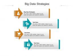 Big Data Strategies Ppt Powerpoint Presentation Inspiration Background Designs Cpb