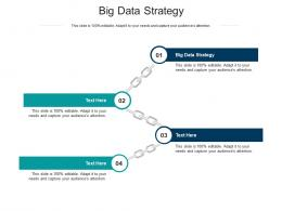 Big Data Strategy Ppt Powerpoint Presentation File Grid Cpb
