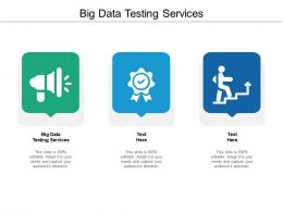 Big Data Testing Services Ppt Powerpoint Presentation Gallery Introduction Cpb