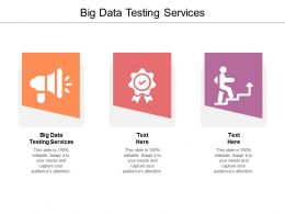 Big Data Testing Services Ppt Powerpoint Presentation Infographics Diagrams Cpb