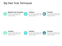 Big Data Tools Techniques Ppt Powerpoint Presentation Designs Download Cpb