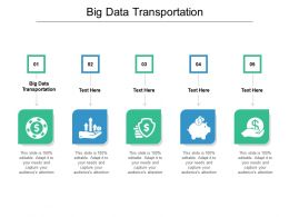 Big Data Transportation Ppt Powerpoint Presentation Styles Clipart Cpb