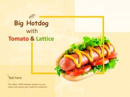 Big Hot Dog With Tomato And Lattice