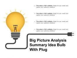 Big Picture Analysis Summary Idea Bulb With Plug