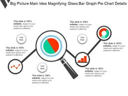 Big Picture Main Idea Magnifying Glass Bar Graph Pie Chart Details
