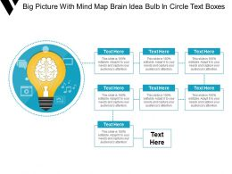 Big Picture With Mind Map Brain Idea Bulb In Circle Text Boxes