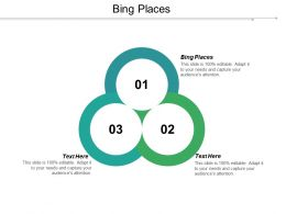 Bing Places Ppt Powerpoint Presentation Gallery Background Image Cpb