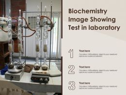 Biochemistry Image Showing Test In Laboratory