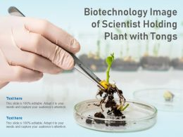Biotechnology Image Of Scientist Holding Plant With Tongs