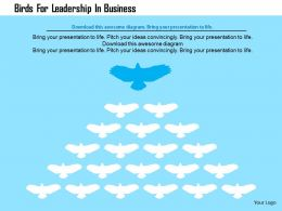 Birds For Leadership In Business Flat Powerpoint Design
