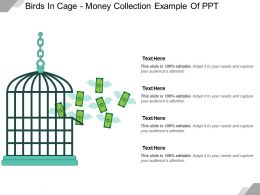 Birds In Cage Money Collection Example Of Ppt