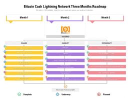Bitcoin Cash Lightning Network Three Months Roadmap
