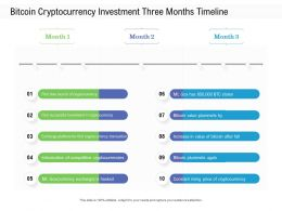 Bitcoin Cryptocurrency Investment Three Months Timeline