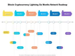Bitcoin Cryptocurrency Lightning Six Months Network Roadmap