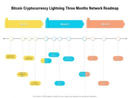 Bitcoin Cryptocurrency Lightning Three Months Network Roadmap