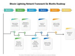 Bitcoin Lightning Network Framework Six Months Roadmap