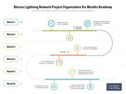 Bitcoin Lightning Network Project Organization Six Months Roadmap