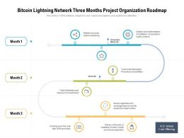 Bitcoin Lightning Network Three Months Project Organization Roadmap