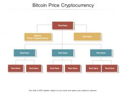 Bitcoin Price Cryptocurrency Ppt Powerpoint Presentation Infographics Example Cpb