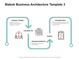 Bizbok Business Architecture Actionable Plans Ppt Powerpoint Presentation Pictures Microsoft