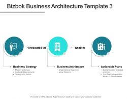 Bizbok Business Architecture Template Business Powerpoint Presentation Slides