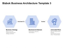 Bizbok Business Architecture Template Business Strategy Actionable Plans Ppt Powerpoint Presentation Icon