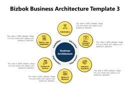 Bizbok Business Architecture Template Information Powerpoint Presentation Slides