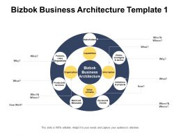 Bizbok Business Architecture Template Organization Information Ppt Powerpoint Presentation Infographics Files