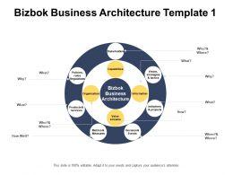 Bizbok Business Architecture Template Organization Information Ppt Powerpoint Presentation Infographics Files