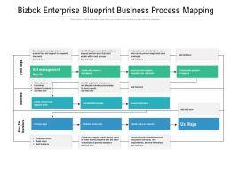 Bizbok Enterprise Blueprint Business Process Mapping