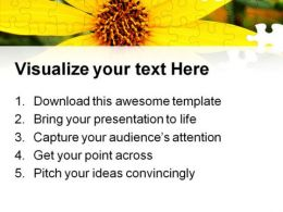 Black Eyed Susans Nature PowerPoint Templates And PowerPoint Backgrounds 0211  Presentation Themes and Graphics Slide03