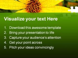 Black Eyed Susans Nature PowerPoint Templates And PowerPoint Backgrounds 0211  Presentation Themes and Graphics Slide02