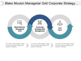 Blake Mouton Managerial Grid Corporate Strategy Risk Management Cpb